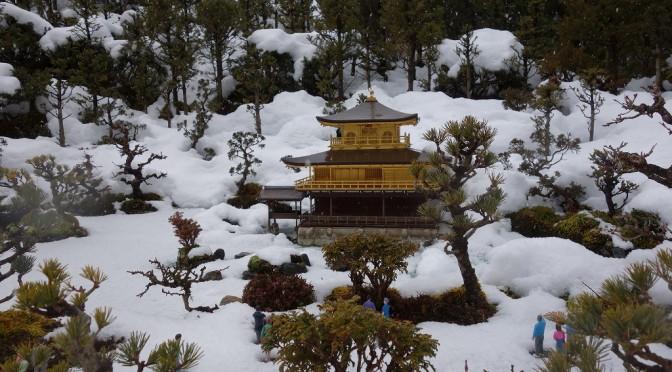 【京都】雪中の鹿苑寺金閣【TWS】